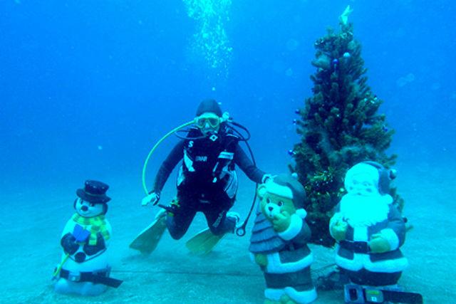 【体験ダイビング・通常プラン】お一人様歓迎★プライベートで楽しめます!★写真プレゼント