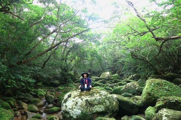 【一日】西表島屈指のジャングルコース★ユツンの滝トレッキング
