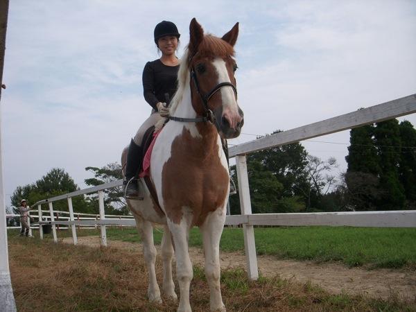 【騎乗時間15分】初心者歓迎!岡山の自然を感じる乗馬トレッキング♪