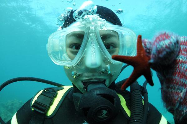 【屋久島・体験ダイビング】美しい屋久島の自然を体験ダイビングで満喫!★写真&ポストカードプレゼント