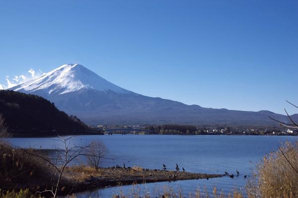 【カヌーガイド】スキル不要♪ガイドが河口湖の魅力を伝えます!