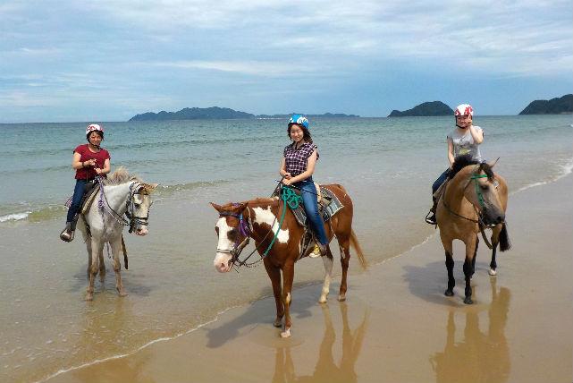 【ビーチ乗馬体験】馬場+ビーチライディング☆乗馬満喫プラン