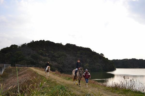 【ミニ遠乗りプラン】ひとりで馬に乗ってお散歩体験☆