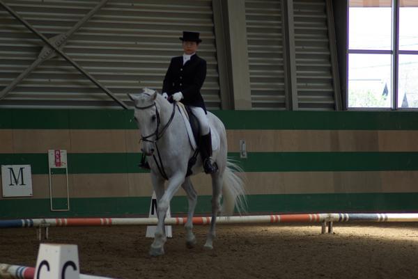 【騎乗時間30分】体験乗馬★乗馬の第一歩を踏み出そう!