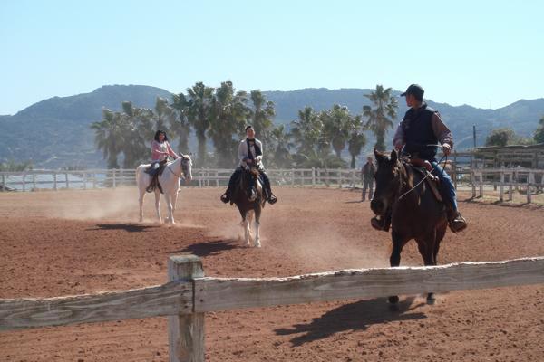 【長崎・平戸・乗馬体験】乗馬の基礎から学べる!馬を自由に操ろう!★写真プレゼント