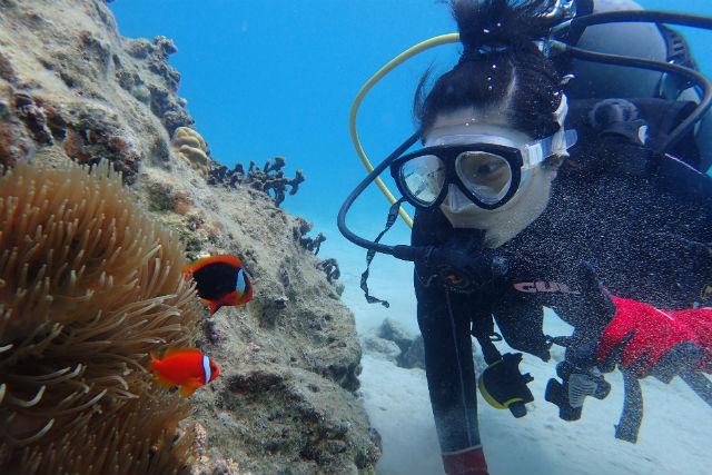 【鹿児島・奄美大島・ダイビング】初めての方にオススメ!ビーチ体験ダイビング(水中カメラレンタル付)