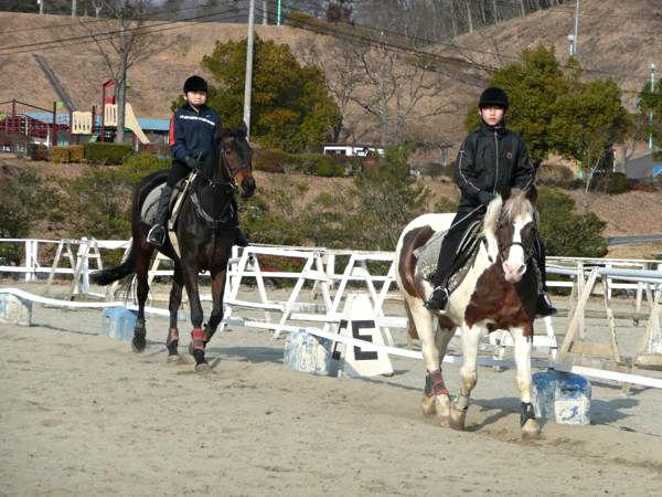 【駈歩レッスン・45分】風が気持ちいい★乗馬を思いっきり楽しみたい♪