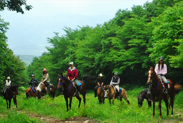 【外乗プラン】山梨の大自然をもっと贅沢に★乗馬で美しい景色も楽しもう!★コーヒー付き