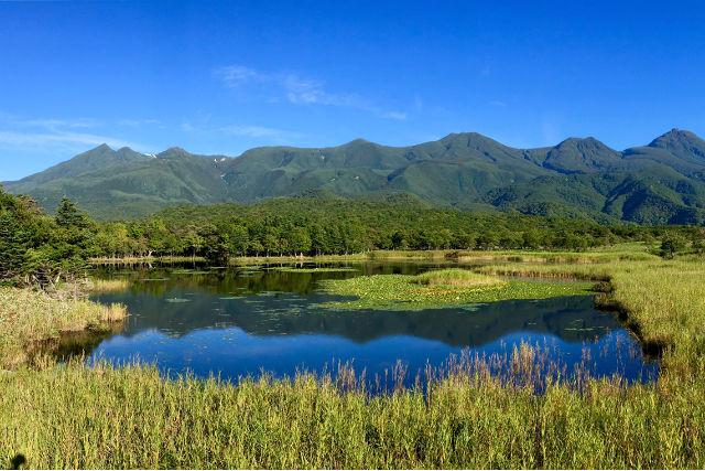 【北海道・知床・トレッキング&クルージング・1日】知床の森と海へ!大自然を満喫できる贅沢ツアー!