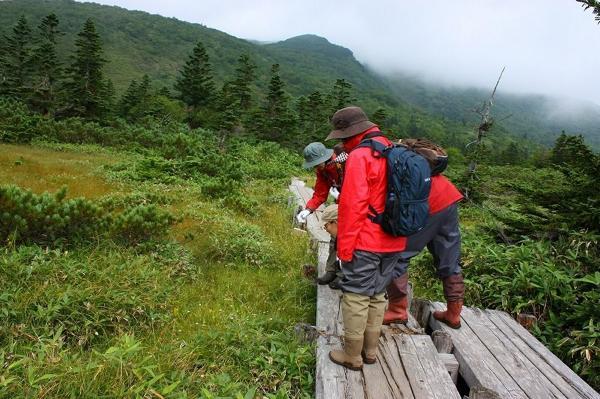 【半日・午前】野生動物や野鳥も生息!羅臼湖ネイチャーツアー!