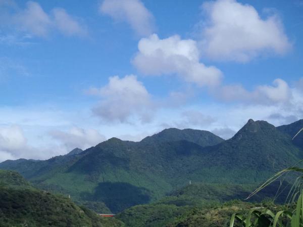 【エコツアー】島内一周★屋久島満喫するならこのプランがオススメ!