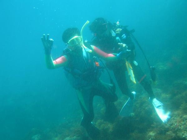 【体験ダイビング】伊豆海洋公園を知り尽くしたガイドがご案内します!★写真プレゼント