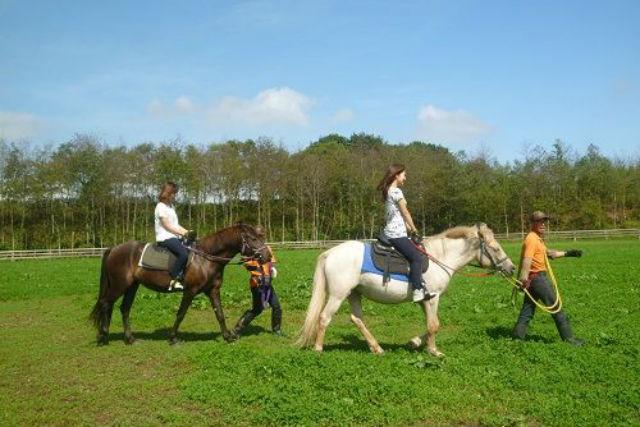 【引き馬・お散歩コース】広い放牧地の周りへおでかけ★