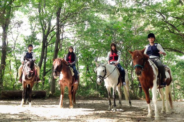 兵庫・乗馬・レッスン30分+外乗30分(森林散歩コース・馬とのふれあいクーポン付き)