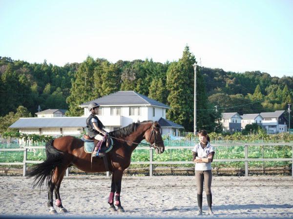 【騎乗30分・乗馬体験】10歳からOK!マンツーマンで乗馬を教えます♪