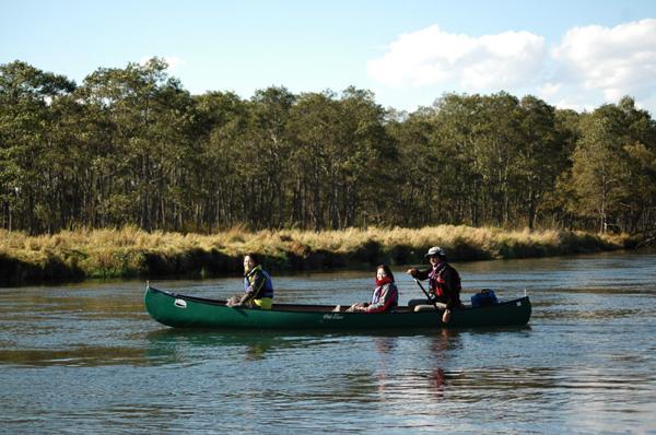 【北海道・釧路湿原・半日・カヌー】広大な湿原を、カヌーに乗って冒険しよう!釧路湿原半日ツアー