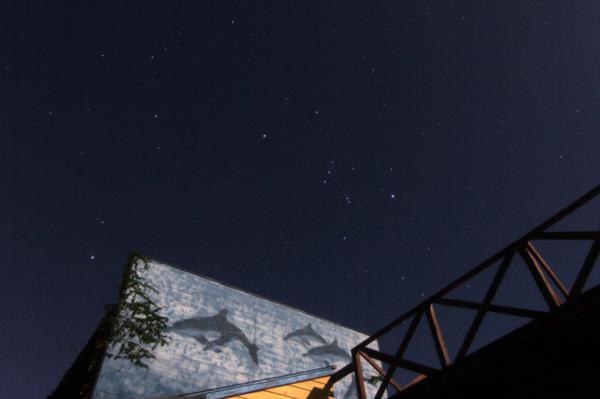 【ナイト】星々の幻想的な灯りに魅せられて☆スターウォッチング!