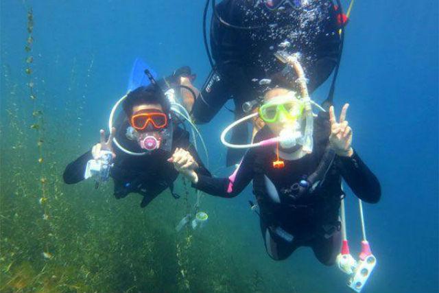 【北海道支笏湖・体験ダイビング】10年連続水質日本1位!クリスタルブルーの支笏湖でダイビング