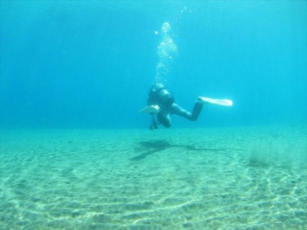 【北海道支笏湖・ファンダイビング】支笏国立公園で淡水ファンダイビング!9年連続水質日本一の湖です