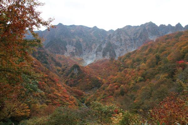【1日・谷川岳】初心者歓迎♪のんびりトレッキング!