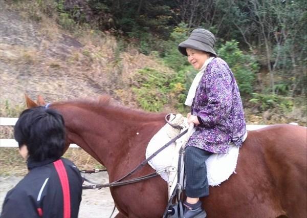 【ホースセラピー】馬とのふれあいで心を癒しましょう♪