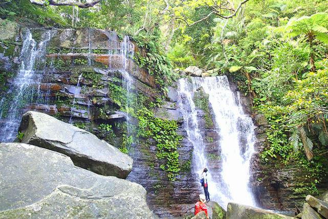 【西表島・トレッキング】マイナスイオンを浴びながらトレッキング!目指すは秘境ゲータの滝