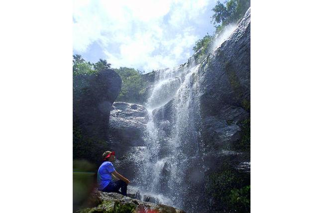 【西表島・トレッキング】イリオモテヤマネコに遭遇!?ユツン3段の滝を目指そう