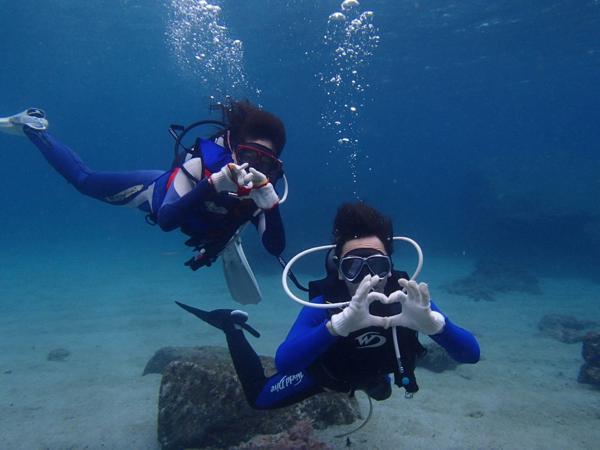 【体験・1ダイブコース】ライセンス不要!最短2時間で屋久島ダイビング!