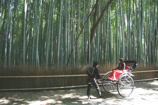 【京都・嵐山・人力車・120分貸切】人力車で巡る、いにしえの旅路。町並保存地区に行ける120分コース