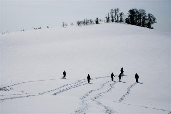 【半日】短時間でさっぽろの自然を楽しもう★スノーシュー半日プラン