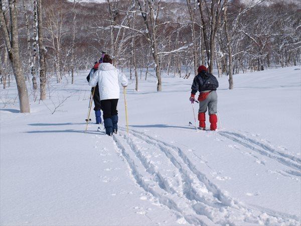 【半日】ゲレンデ以外のフィールドを散策☆ネイチャースキープラン
