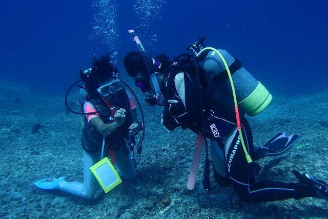 【1日・体験・ビーチ】楽々エントリー♪宮古島ビーチ体験ダイビング★2本目は無料サービス