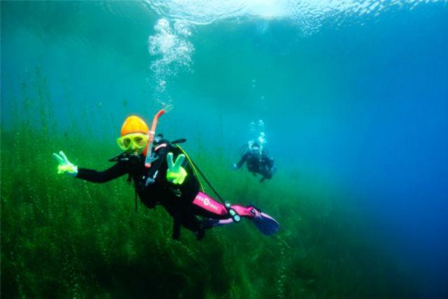 【ファンダイビング】北海道・支笏湖で淡水ダイビング(2ビーチ)
