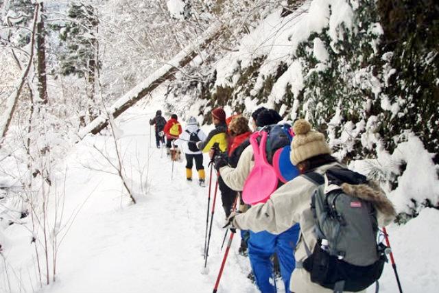 【京都・スノーシュー・1日】雪山をたっぷり満喫!スノーシュー&エアボードツアー
