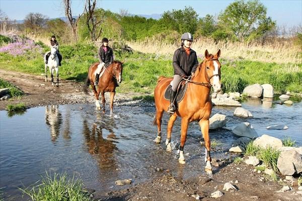 【経験者向け・ビジター外乗】赤城の景色を楽しむ☆馬と大自然を散歩しよう!
