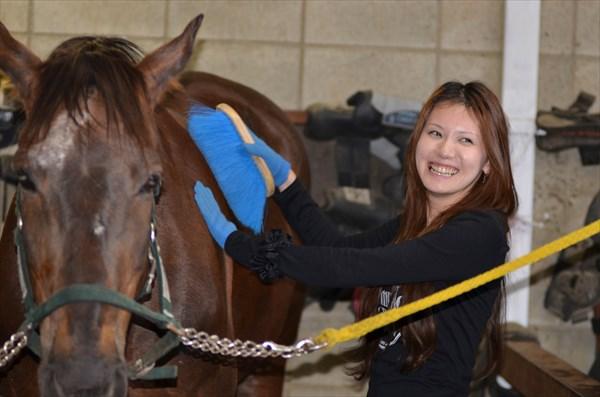 【群馬赤城・乗馬体験】1回プランで気軽に体験!馬と触れ合う楽しさを知ろう!