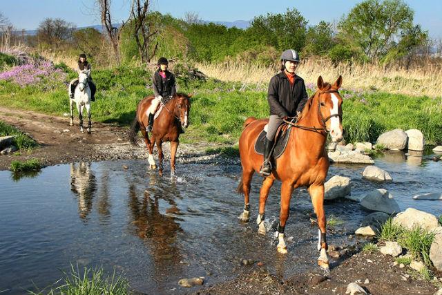 【群馬赤城・乗馬体験】乗馬経験者様向け。ビジター障害レッスンが受けられます