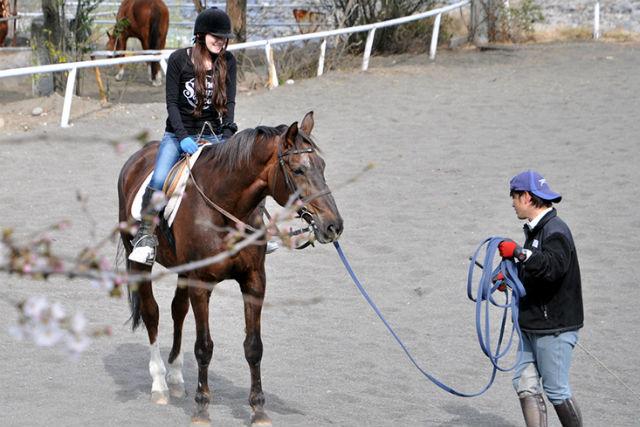 【群馬赤城・乗馬体験】馬と子どもが心でふれ合える教育、ポニークラブビジター!