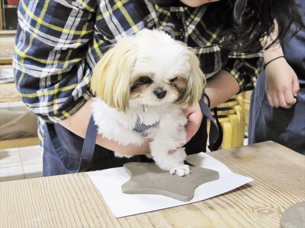 【静岡・伊東市・陶芸体験】愛犬の足型を残せます!わんこプレート
