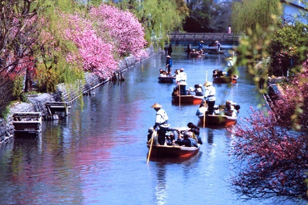 【柳川川下り】船頭の舟唄と四季を楽しむ舟で、1時間の旅