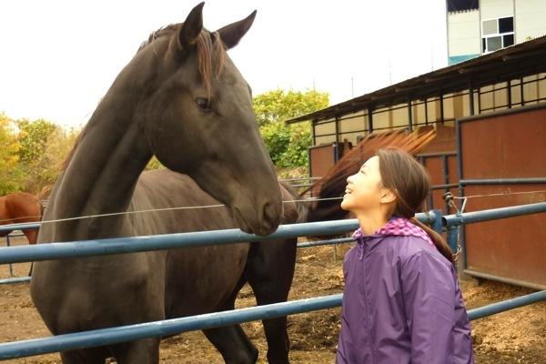 【散策プロムナード(引き馬)30分】岩手の牧場で、馬と心が「通い合う」はじめての体験を