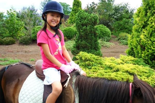 【ビジター乗馬レッスン・60分】初心者大歓迎!岩手の牧場で、馬と心を通わせる感動を