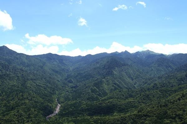 【1日】苔むす森から太鼓岩へ。白谷雲水峡を歩こう