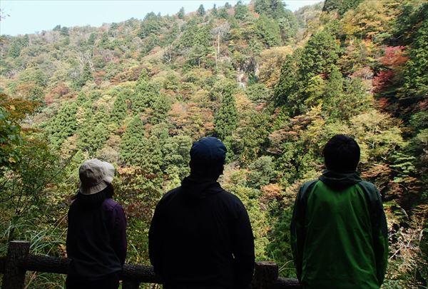 【半日・午前or午後】中国自然歩道の森林セラピー®で癒しの時間