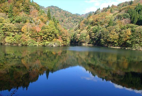 【1日】鳥取・芦津セラピーロードで1日じっくり森林セラピー®