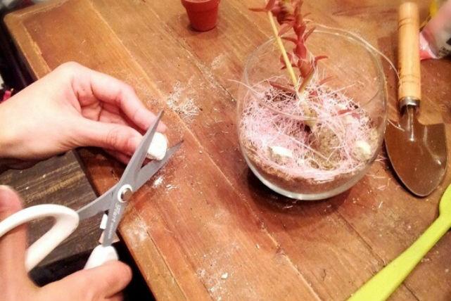 【名古屋・寄せ植え体験】お部屋に潤いを!タニクグラスワークショップ