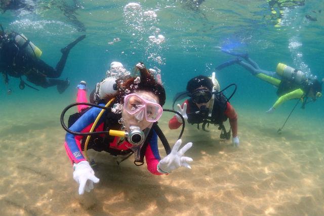 【体験ダイビング】初めての方大歓迎!海の世界をたっぷりご案内します