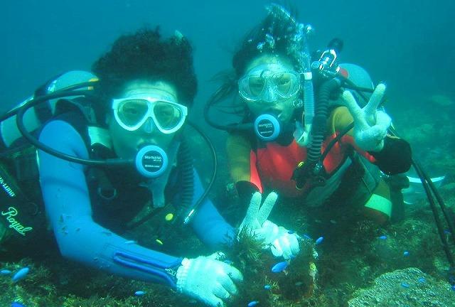 【伊豆・体験ダイビング】お一人でも団体でも!体験ダイビングとシュノーケリングで海を満喫しよう!★写真プレゼント