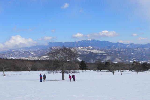 【山梨・スノーシュー】八ヶ岳の大自然を踏みしめる雪原スノーシューハイキング!