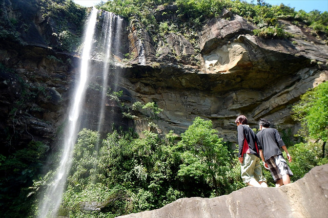 【西表島・シーカヤック・1日】沖縄最大ピナイサーラの滝までトレッキングも!絶景を味わおう